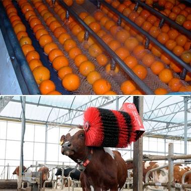 Щетки для сельского хозяйства